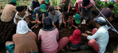 Photo caption: Farmer training in Bulukumba, South Sulawesi.  Photo by Enggar Paramita/ICRAF
